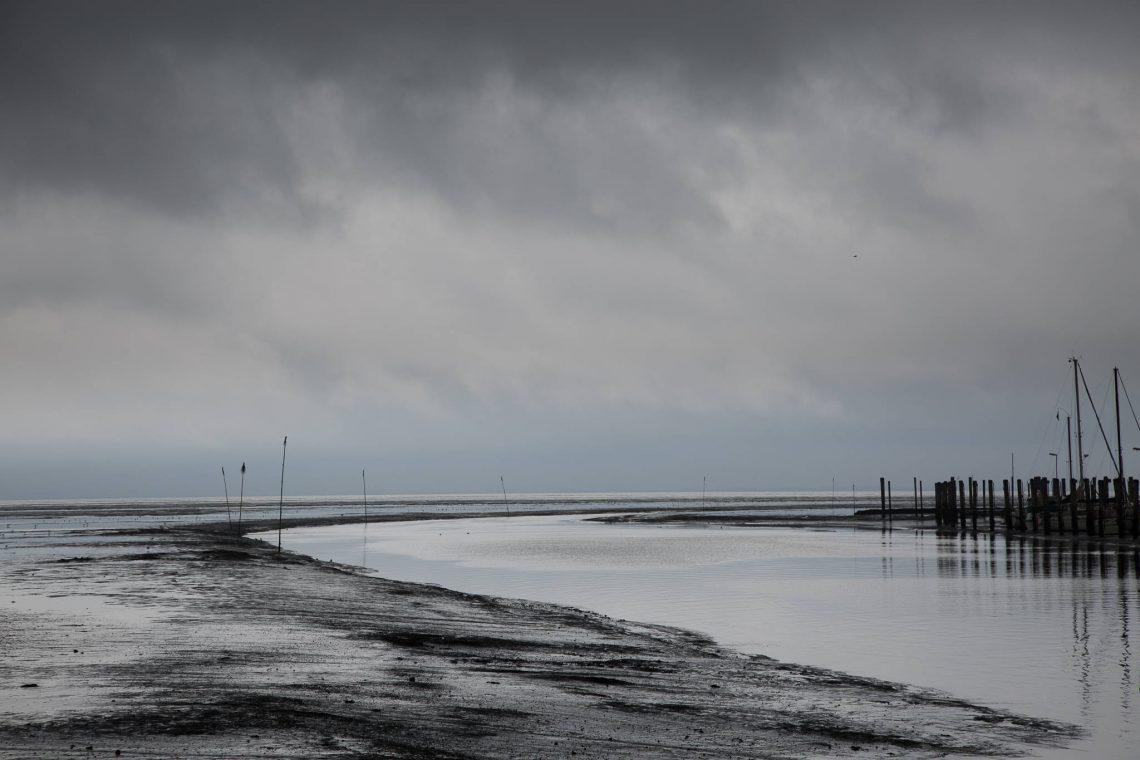 Hafen Tammensiel